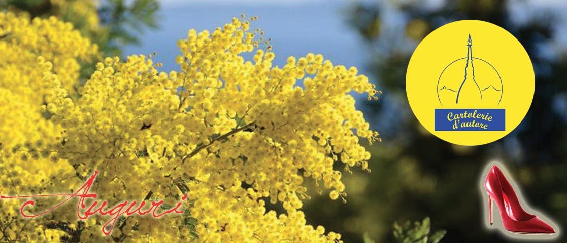 Mimosa 8 marzo festa delle donne cartolerie dautore