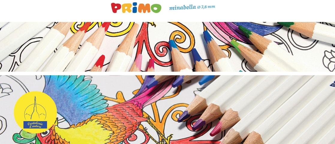 Primo Scuola -Matite colorate di alta qualità.